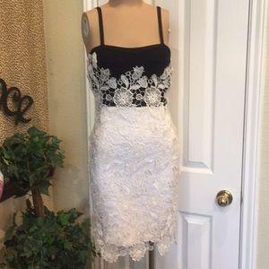 Dresses & Skirts - Bandage black and white lace covered dress